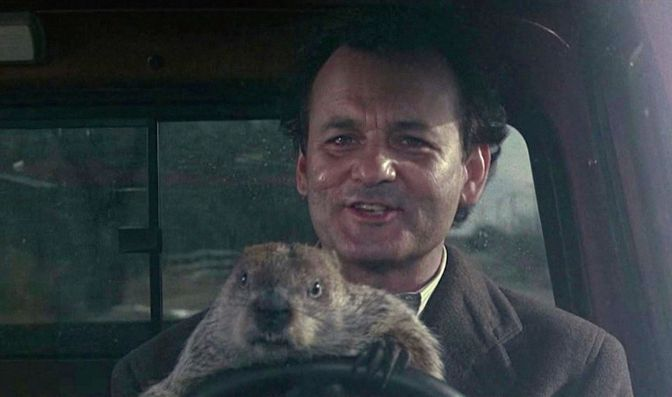 Bill Murray, Groundhog Day, Punxsatawney Phil