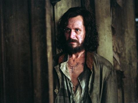 Sirius Black, Harry P;otter and the Prisoner of Azkaban, Gary Oldman