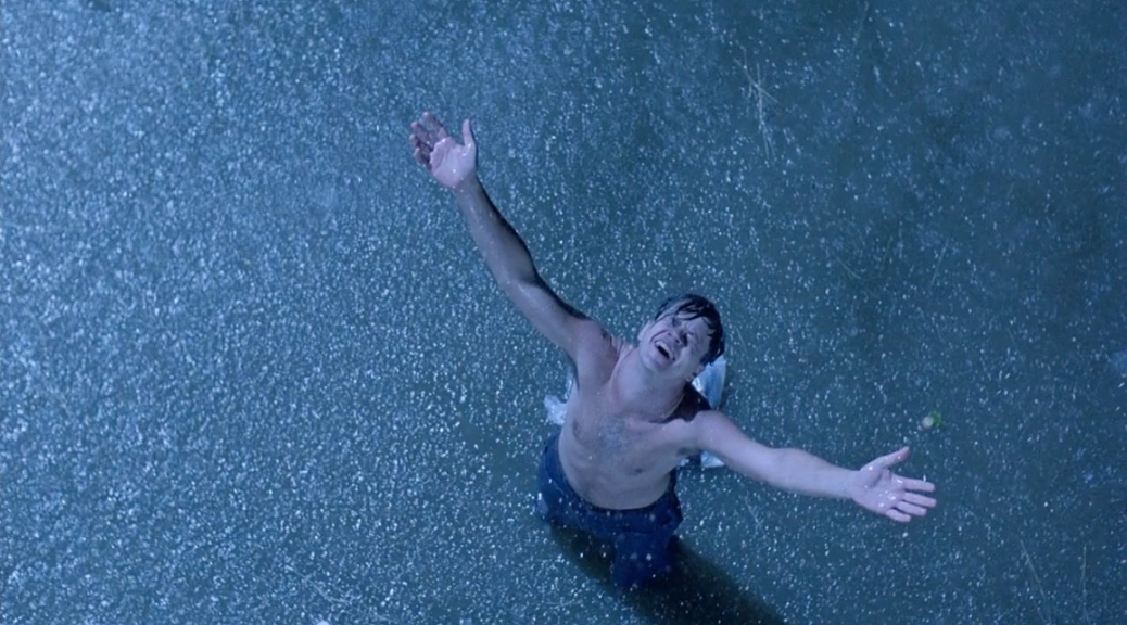 Tim Robbins, The Shawshank Redemption