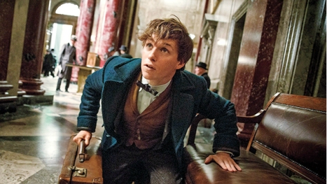 Eddie Redmayne, Newt Scamander, Fantastic Beasts and Where to Find Them