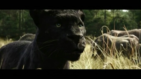 Bagheera, Ben Kingsley, Disney's The Jungle Book