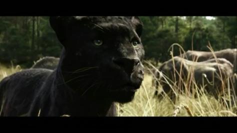 Bagheera, Ben Kingsley, Disney's The Jungle Book