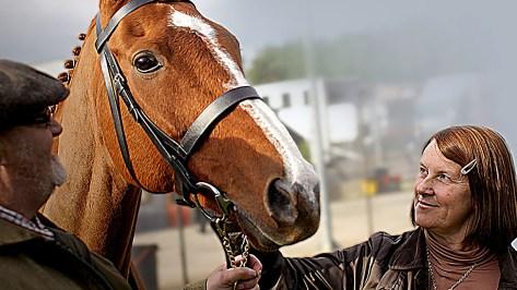 Dark Horse, Dream Alliance