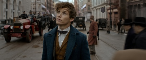 Fantastic Beasts and Where to Find Them, Newt Scamander, Eddie Redmayne