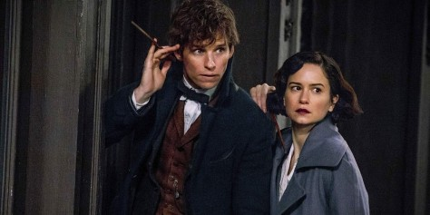 Fantastic Beasts and Where to Find Them, Newt Scamander, Eddie Redmayne, Katherine Waterston