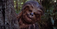 Chewbacca, Peter Mayhew, Star Wars Episode VI: Return of the Jedi
