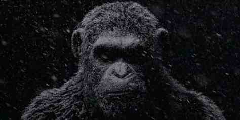 Caesar, Andy Serkis, War for the Planet of the Apes