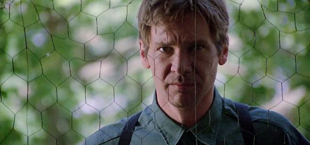 Witness, Harrison Ford